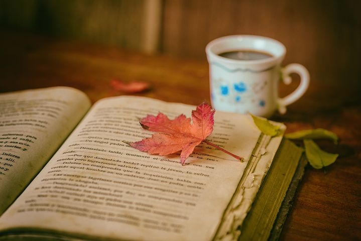 A maple leaf on a hardback book with a mug in the background.